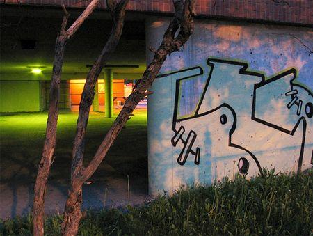 Berzerker - Grafitti work at Stirling Ave - Justin Wonnacott photo